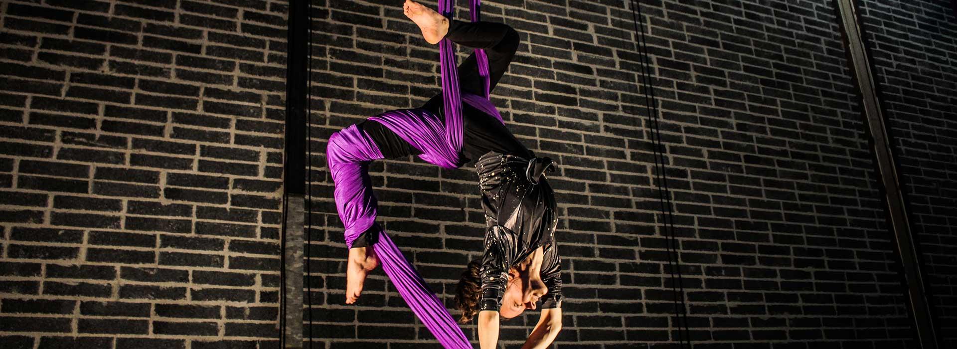 Irish Aerial Creation Centre Artist hanging from purple silk