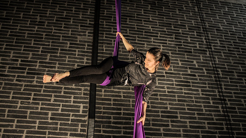 Irish Aerial Creation Centre Artist on Purple Silk