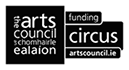 The Arts Council Funding sponsors the Irish Aerial Creation Centre